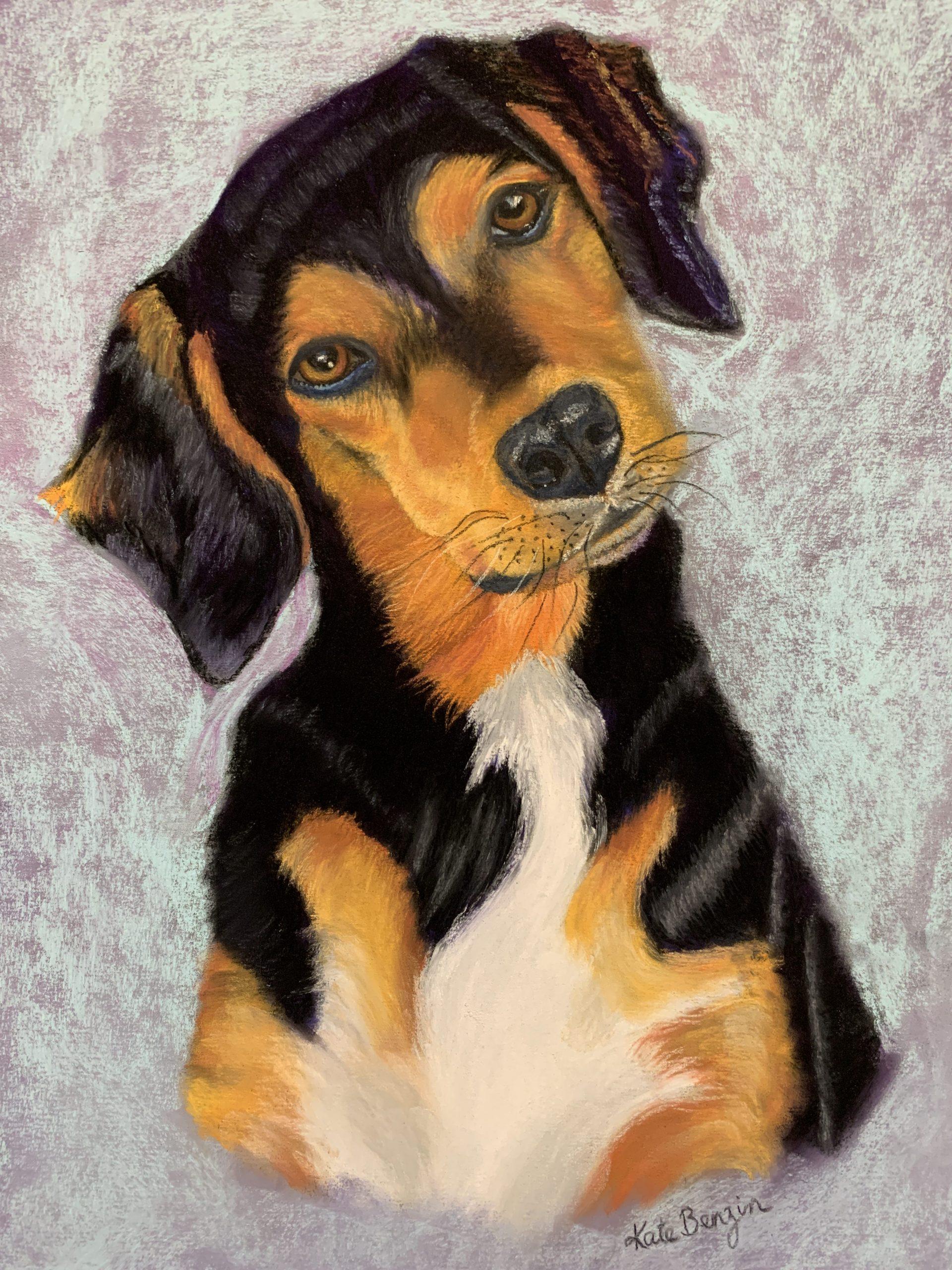 Tri Color Dog