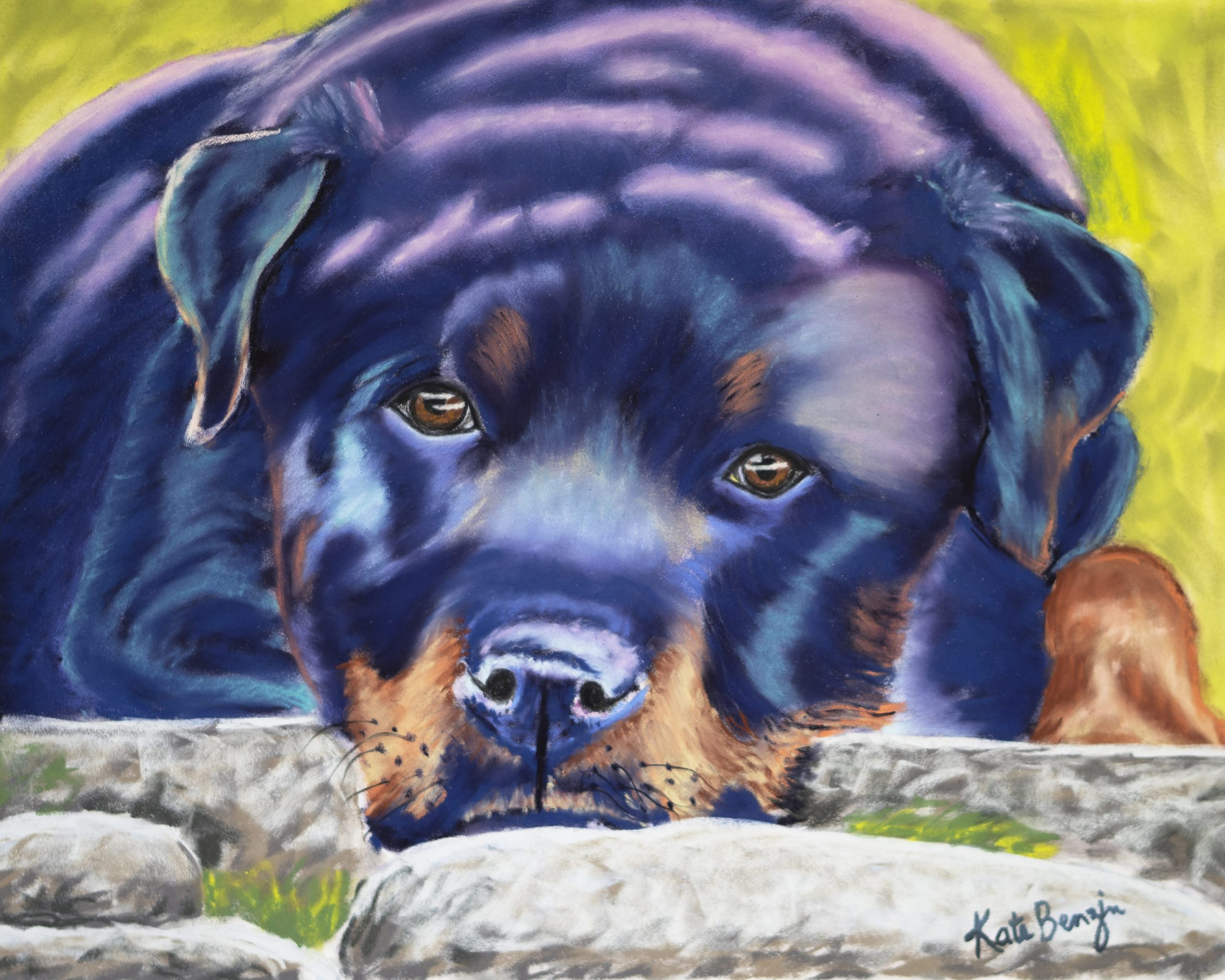 Rottweiler in the Park